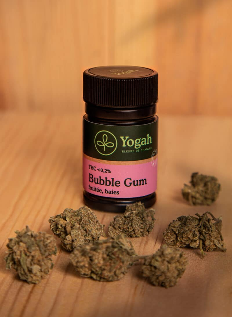 Bubble Gum CBD - 1g